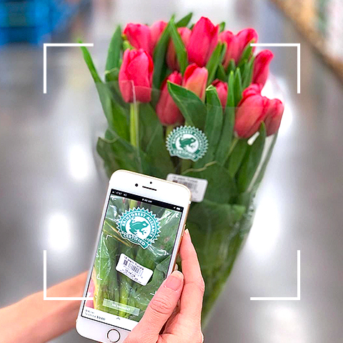 Scan and Go Shopping